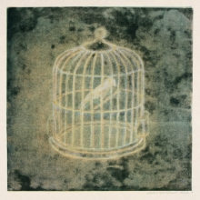 bird cage, II